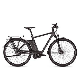 Raleigh Ashford S11 17Ah 55cm darkgrey matt High-Speed elektrische herenfiets