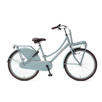 Popal Daily Dutch Basic Plus 24inch matblauw Transportfiets