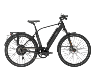 Qwic E-bike Performance RD10speed Heren Achterwielmotor Matte Black