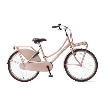 Popal Daily Dutch Basic Plus 22inch zalm Transportfiets