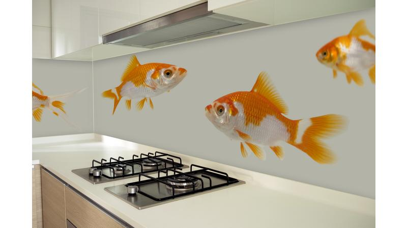 GoldenFishes•keuken