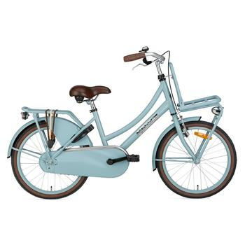 Popal Daily Dutch Basic 20inch mat-blauw Transportfiets