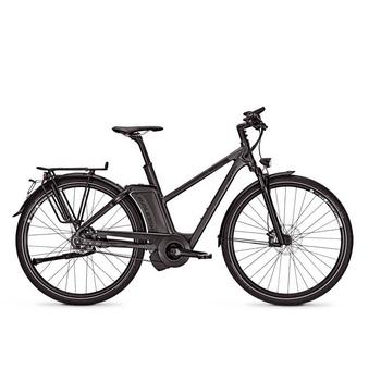 Raleigh Ashford S11 17Ah 45cm darkgrey matt High-Speed elektrische damesfiets