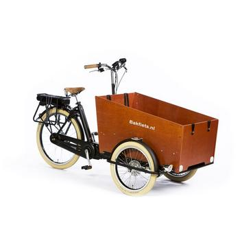 Cargotrike Cruiser Wide Steps
