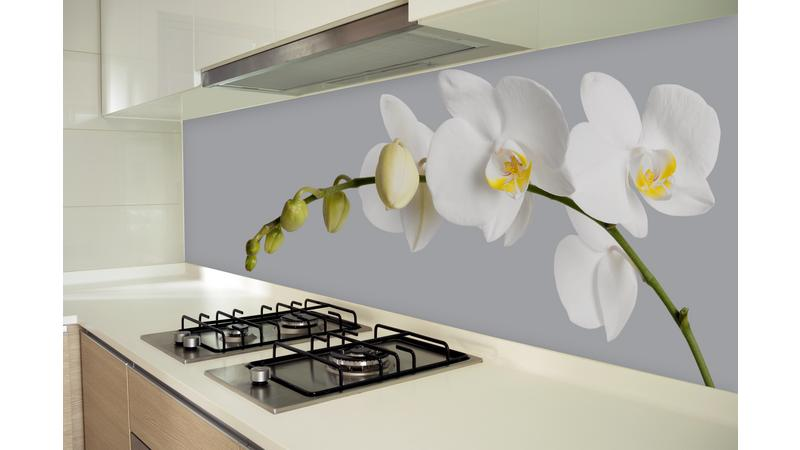 WhiteOrchids•keuken