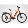 2019_studio_performance_rd11speed_diamond_dutch-orange