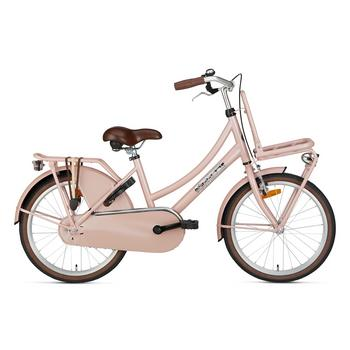Popal Daily Dutch Basic 20inch zalm Transportfiets